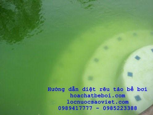 cách xử lý nước bể bơi màu xanh lá cây