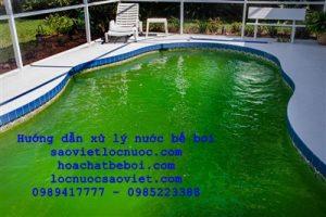 bể bơi bị rêu xanh