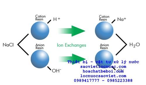 trao đổi ion là gì