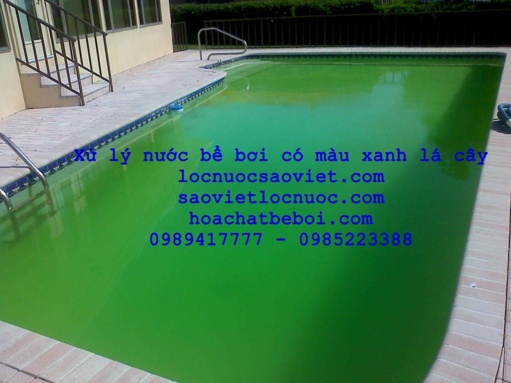 nước bể bơi có màu xanh lá cấy