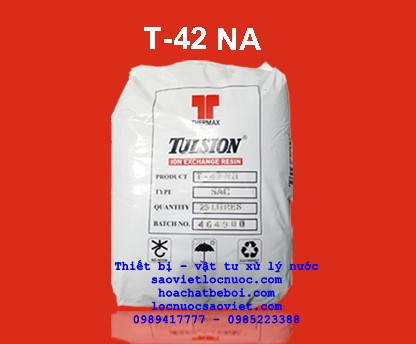 Hạt cation Tulsion T42